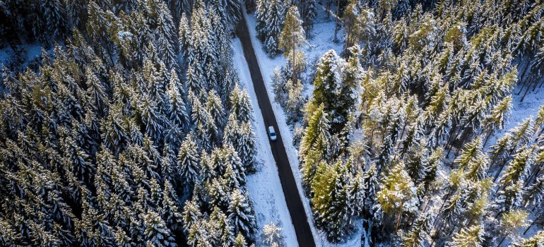 a long road between trees and a white truck in the middle of it