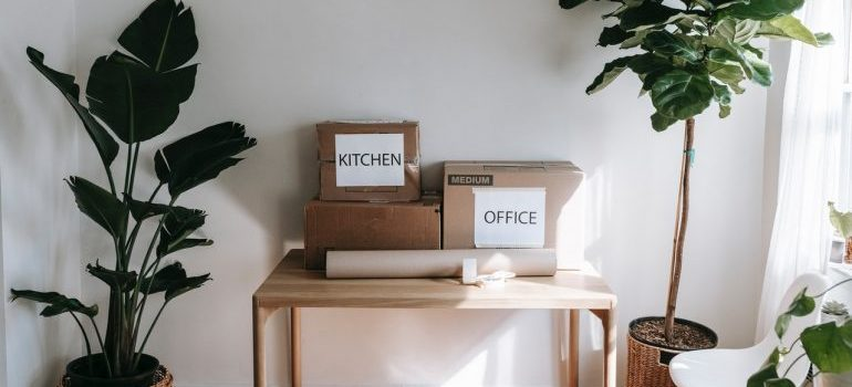 moving boxes for small condo relocation