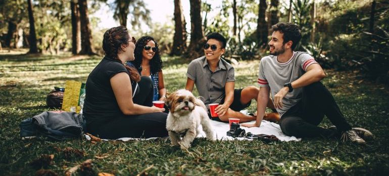 A group of friends having a picnic.