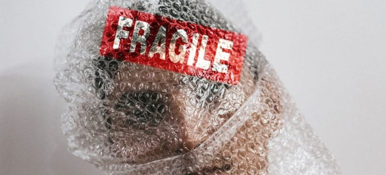 A young man wrapped in bubble wrap with a fragile label on it